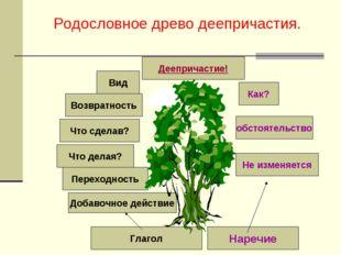 Родословное древо деепричастия. Деепричастие! Как? Не изменяется обстоятельст