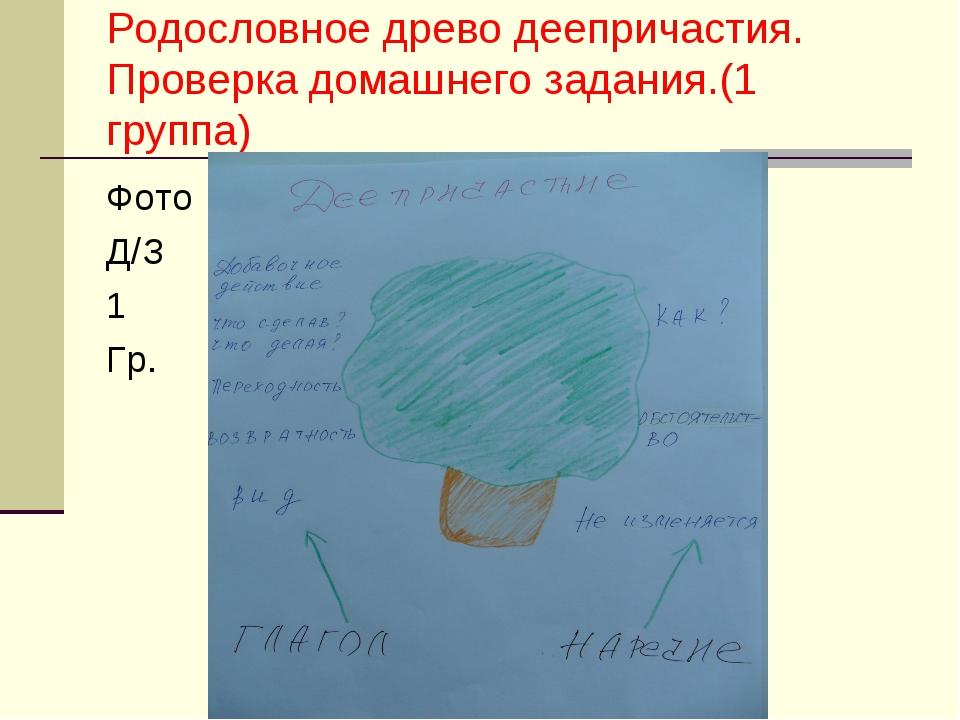 Родословное древо деепричастия. Проверка домашнего задания.(1 группа) Фото Д/...