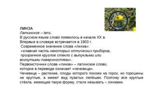 ЛИНЗА Латинское – lens. В русском языке слово появилось в начале XX в. Вперв