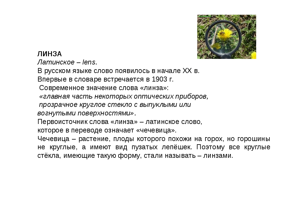 ЛИНЗА Латинское – lens. В русском языке слово появилось в начале XX в. Вперв...