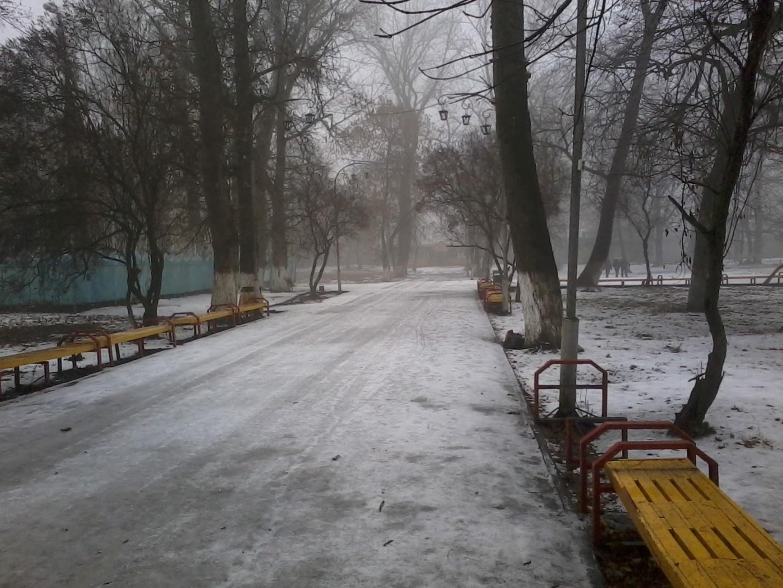 L:\городской сад\20141215_115425.jpg
