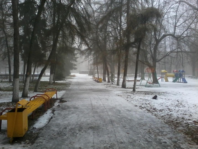 L:\городской сад\20141215_113952.jpg