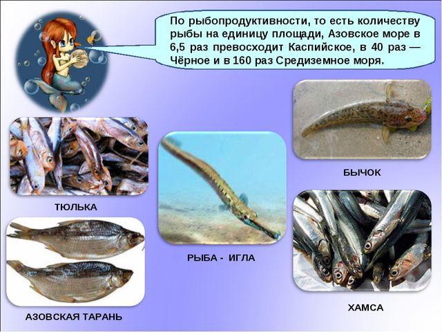 АЗОВСКАЯ ТАРАНЬ ТЮЛЬКА ХАМСА По рыбопродуктивности, то есть количеству рыбы н...