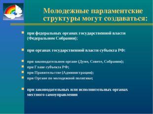 Молодежные парламентские структуры могут создаваться: при федеральных органах
