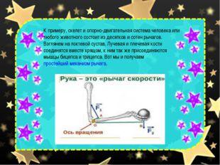 К примеру, скелет и опорно-двигательная система человека или любого животного