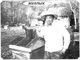 http://atikovo2010.wmsite.ru/_mod_files/ce_images/sh-7.jpg