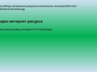 9.http://900igr.net/datas/okruzhajuschij-mir/Dvizhenie-zhivotnykh/0003-003-Am