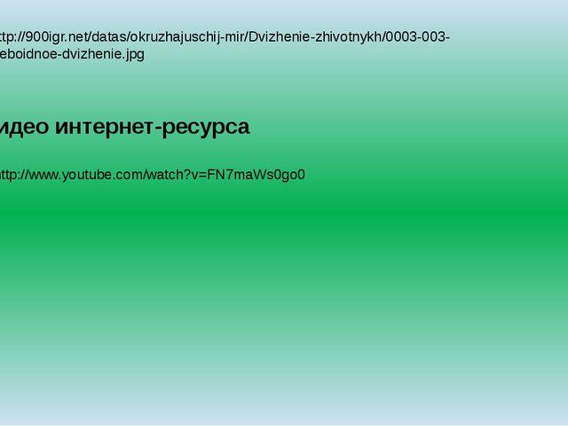 9.http://900igr.net/datas/okruzhajuschij-mir/Dvizhenie-zhivotnykh/0003-003-Am...