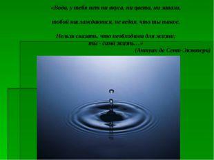 «Вода, у тебя нет ни вкуса, ни цвета, ни запаха, тобой наслаждаются, не ведая