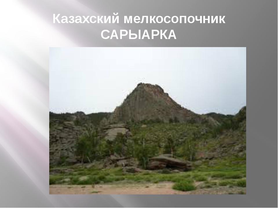 Казахский мелкосопочник САРЫАРКА