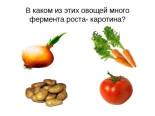 В каком из этих овощей много фермента роста- каротина?