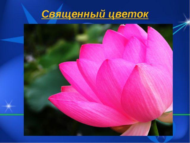 Священный цветок
