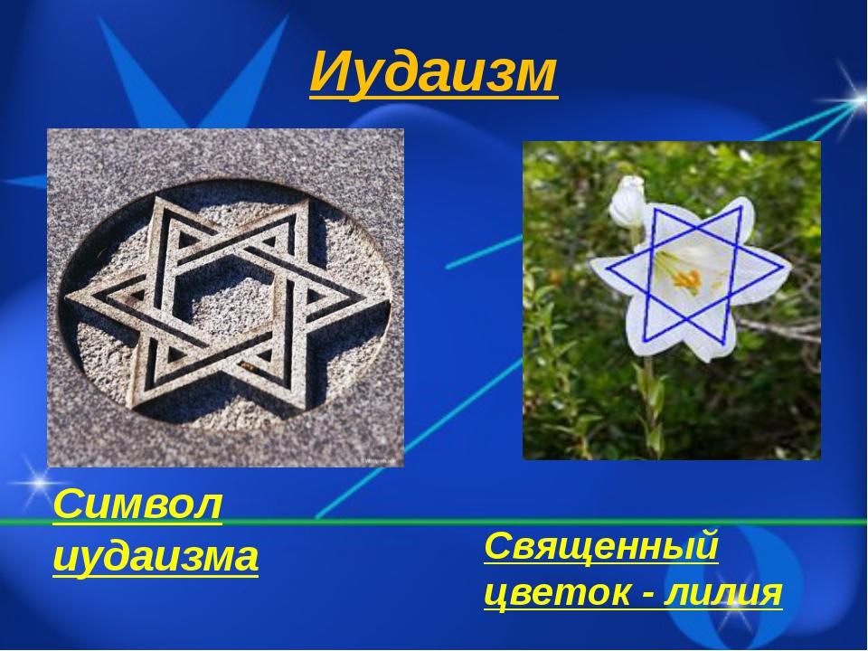 Иудаизм Символ иудаизма Священный цветок - лилия