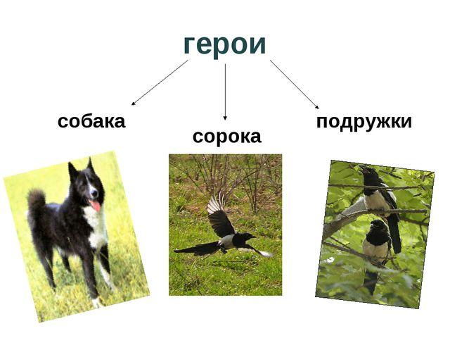 герои собака сорока подружки