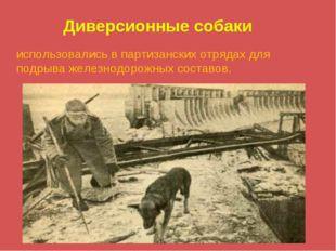 Диверсионные собаки использовались в партизанских отрядах для подрыва железно