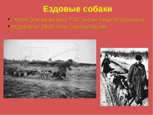 Ездовые собаки с поля боя вывезено 700 тысяч тяжело раненых, подвезено 3500 т