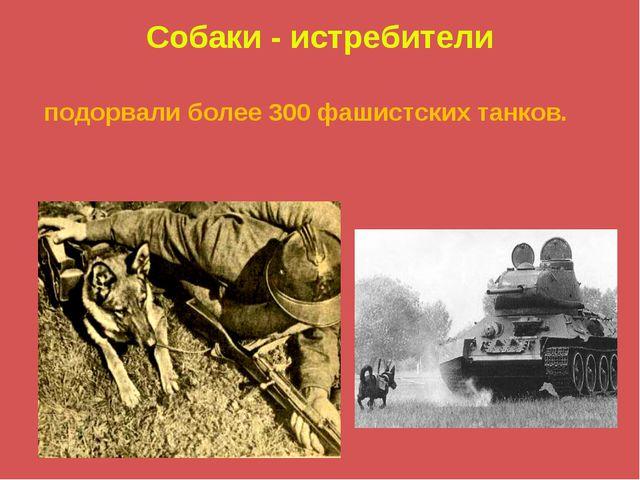 Собаки - истребители подорвали более 300 фашистских танков.