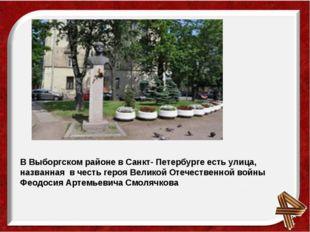 В Выборгском районе в Санкт- Петербурге есть улица, названная в честь героя В