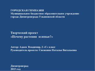 ГОРОДСКАЯ ГИМНАЗИЯ Муниципальное бюджетное образовательное учреждение города