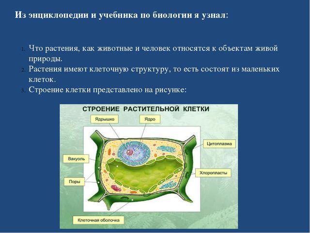 Из энциклопедии и учебника по биологии я узнал: Что растения, как животные и...