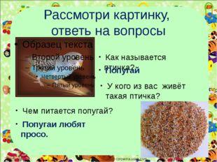 Рассмотри картинку, ответь на вопросы corowina.ucoz.com Как называется птичка