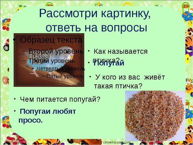 Рассмотри картинку, ответь на вопросы corowina.ucoz.com Как называется птичка...