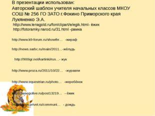 В презентации использован: Авторский шаблон учителя начальных классов МКОУ СО