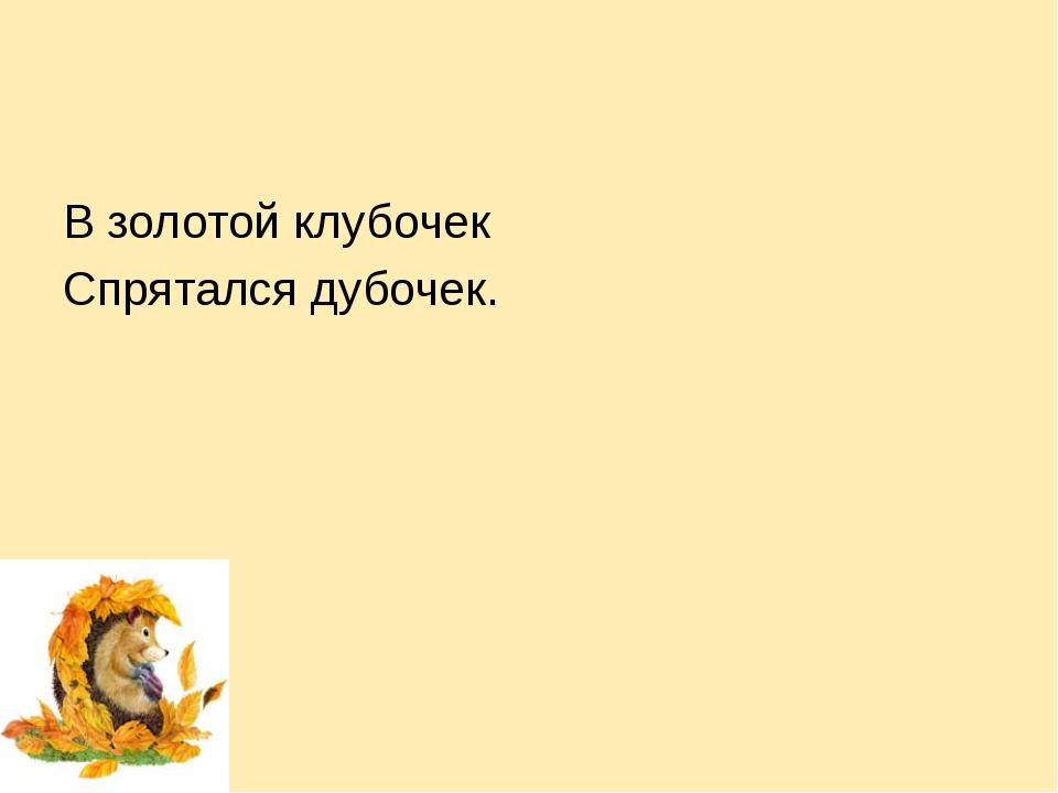 В золотой клубочек Спрятался дубочек.
