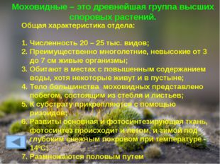 Моховидные – это древнейшая группа высших споровых растений. Общая характерис
