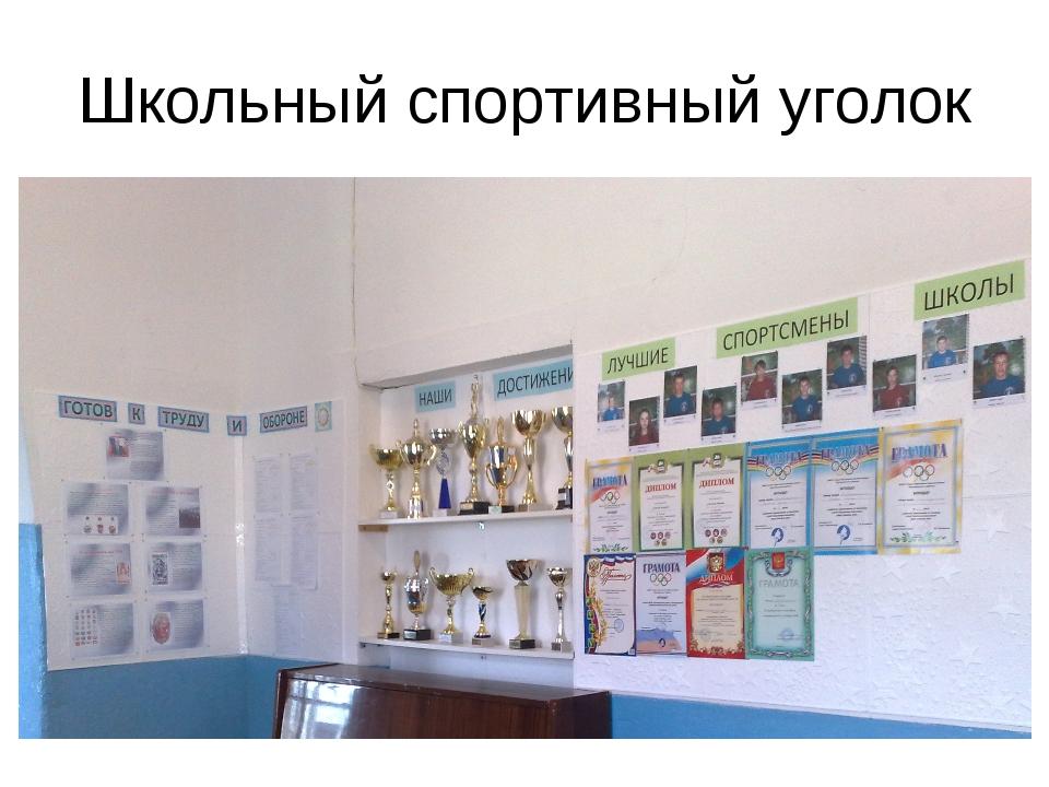 Школьный спортивный уголок