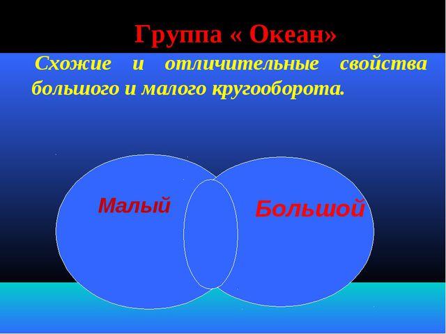 Группа « Океан» Схожие и отличительные свойства большого и малого кругооборот...