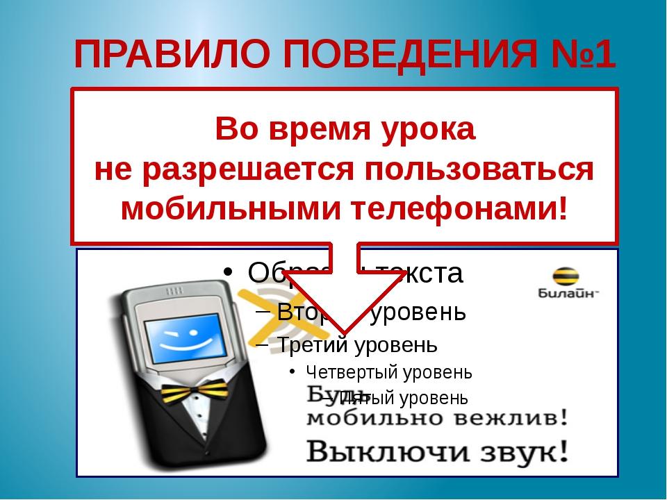 ПРАВИЛО ПОВЕДЕНИЯ №1 Во время урока не разрешается пользоваться мобильными те...