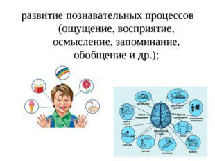 развитие познавательных процессов (ощущение, восприятие, осмысление, запомина