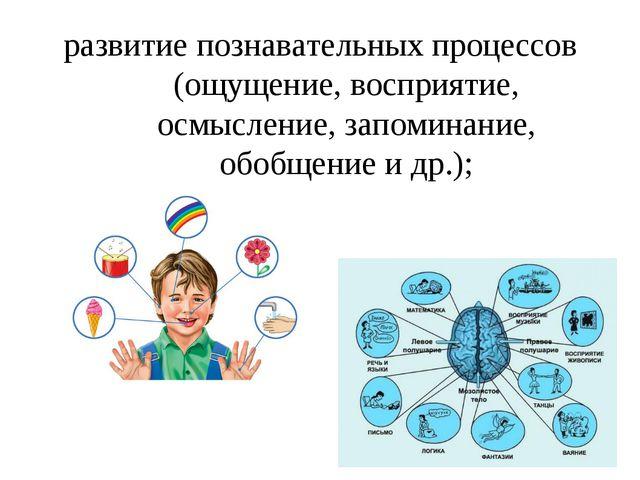 развитие познавательных процессов (ощущение, восприятие, осмысление, запомина...