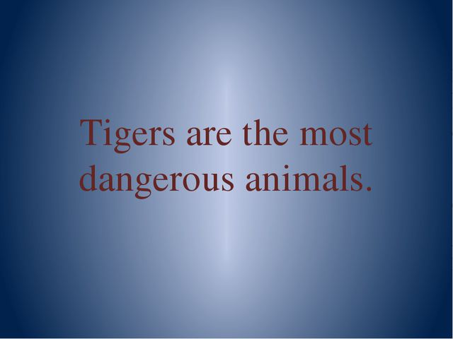 Tigers are the most dangerous animals.