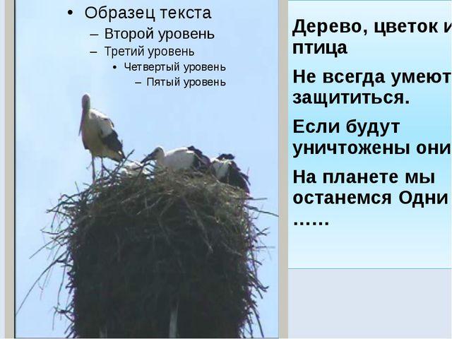 Дерево, цветок и птица Не всегда умеют защититься. Если будут уничтожены они,...