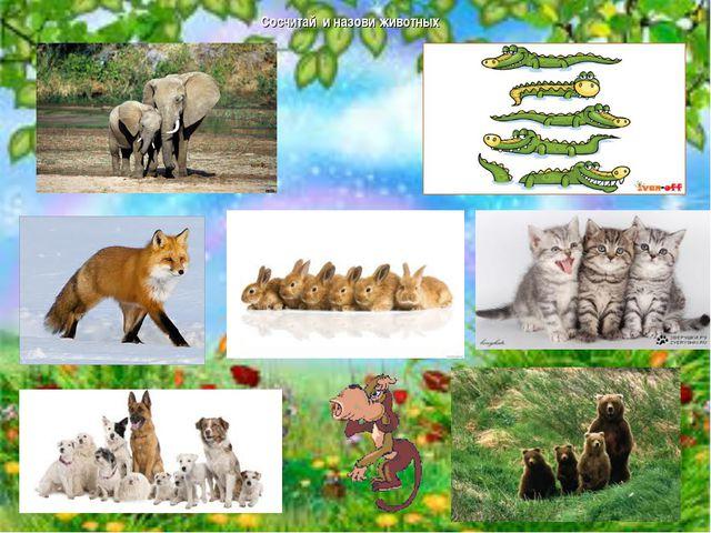 Сосчитай и назови животных