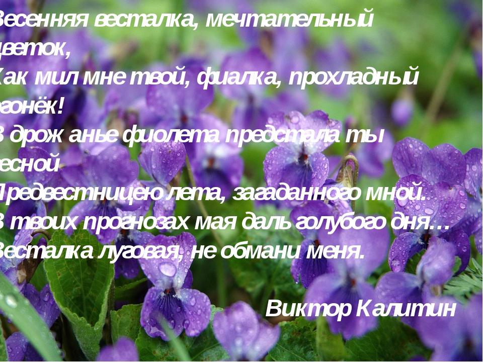 Весенняя весталка, мечтательный цветок, Как мил мне твой, фиалка, прохладный...