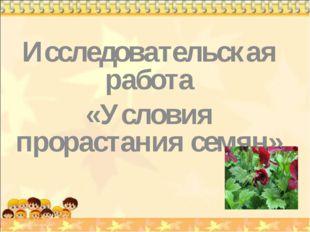 Исследовательская работа «Условия прорастания семян»