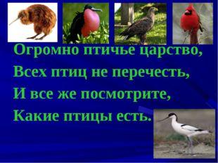 Огромно птичье царство, Всех птиц не перечесть, И все же посмотрите, Какие пт