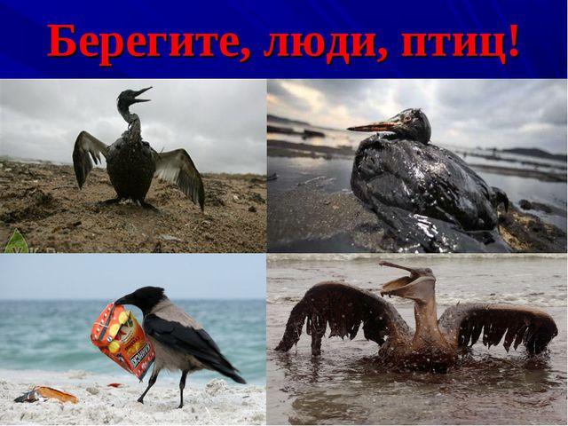 Берегите, люди, птиц!