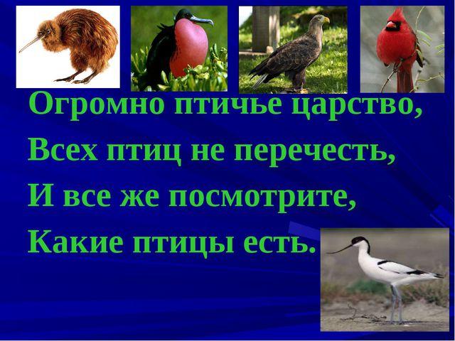 Огромно птичье царство, Всех птиц не перечесть, И все же посмотрите, Какие пт...
