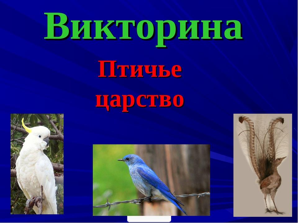 Викторина Птичье царство