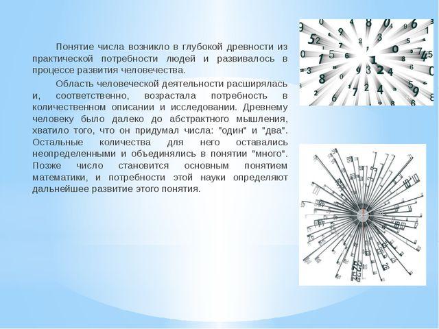 Понятие числа возникло в глубокой древности из практической потребности людей...