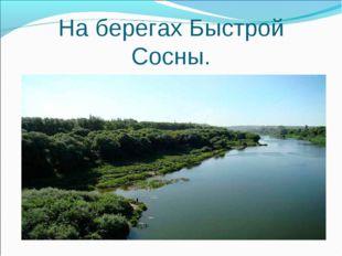 На берегах Быстрой Сосны.