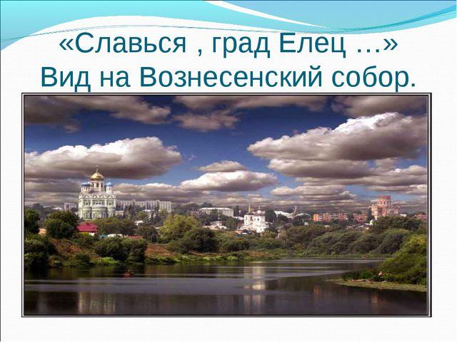 «Славься , град Елец …» Вид на Вознесенский собор.