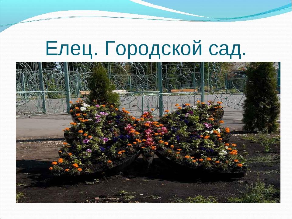 Елец. Городской сад.
