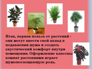 Итак, первая польза от растений - они могут внести свой вклад в подавлении шу