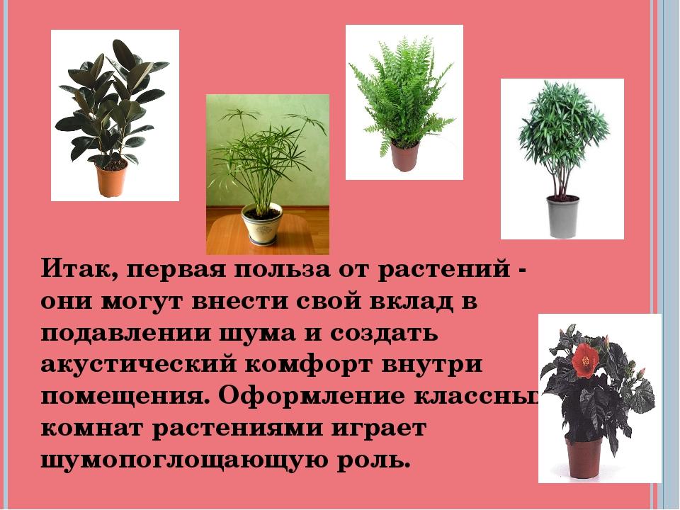 Итак, первая польза от растений - они могут внести свой вклад в подавлении шу...