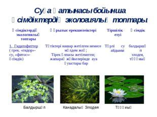Суға қатынасы бойынша өсімдіктердің экологиялық топтары. Балдыршөп Канадалық